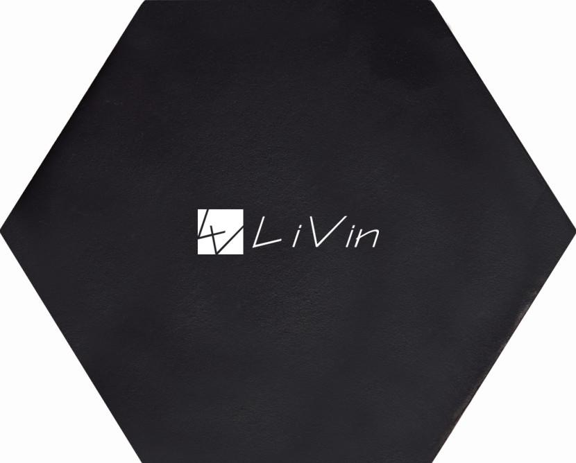 LVD33_副本.jpg
