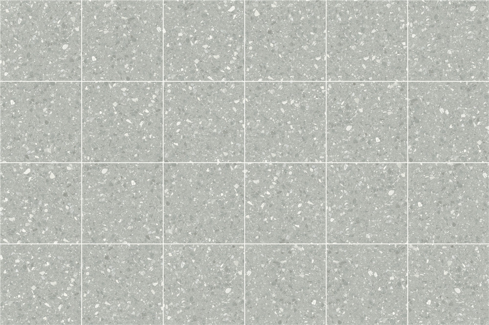 LVF6001.jpg
